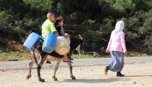 Wasserknappheit geht uns alle an