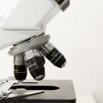 Die Legionärskrankheit - Legionellen schnell erkennen durch Wassertest